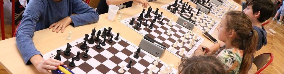 MDK w szachu